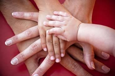 Family Law - Custody
