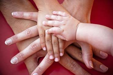 Family Law - Custody
